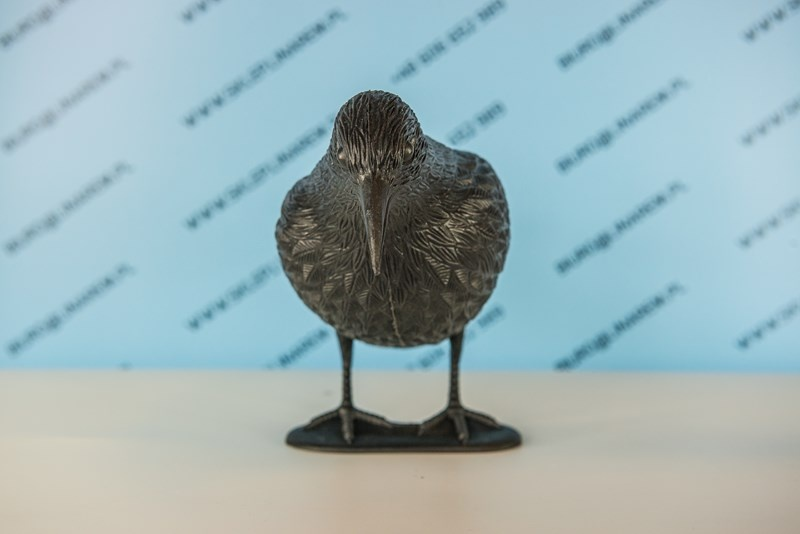 odstraszacze na ptaki